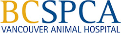 BC SPCA Vancouver Animal Hospital